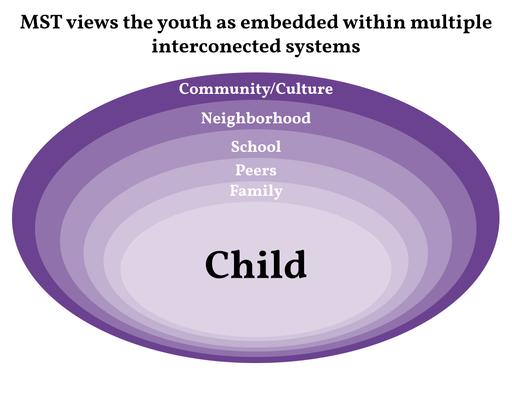 Graphic showing childs interconnected systems